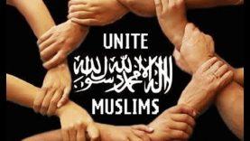 Struggle for Unity of Ummah & Stability of Pakistan